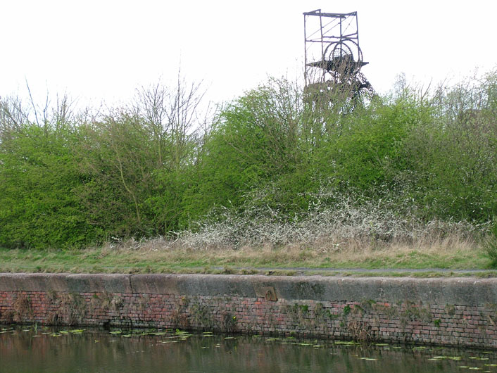 Looking back at the pithead