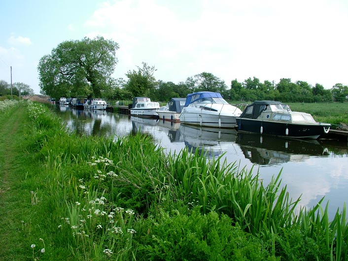 Boats moored