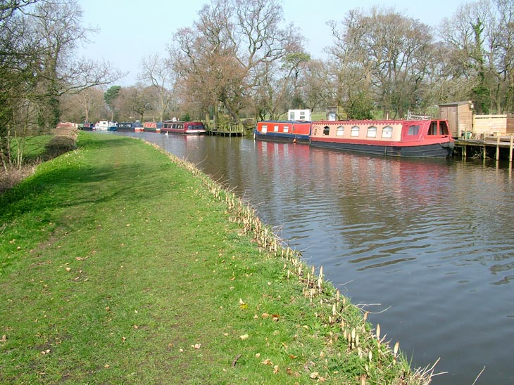 Grass towpath and narrow boats