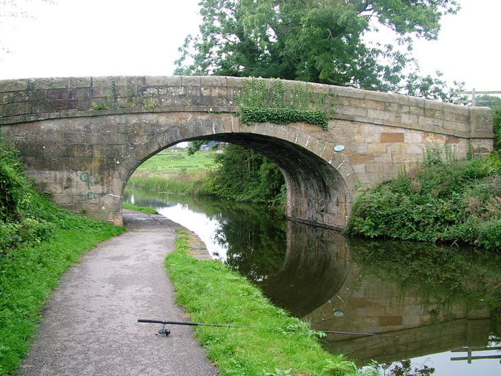 Hammerton Hall bridge (Bridge111)